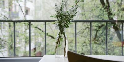 dominick-martin-vase-white-flowers
