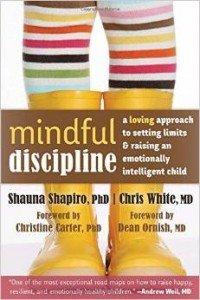 mindful-discipline